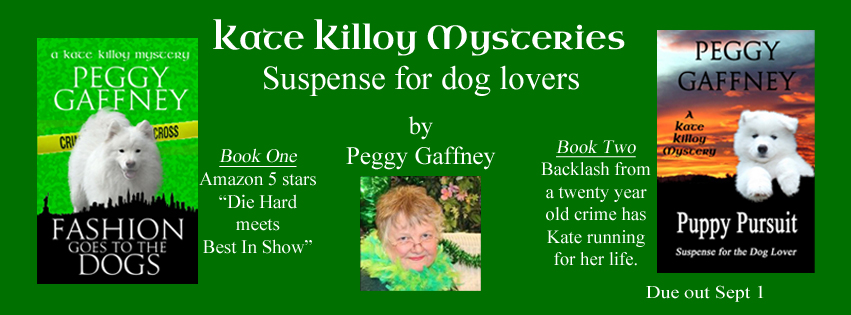 Kate Killoy Mysteries Facebook Page2